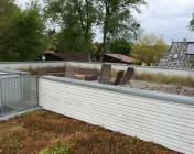 ferienhaus-ostsee-terrasse